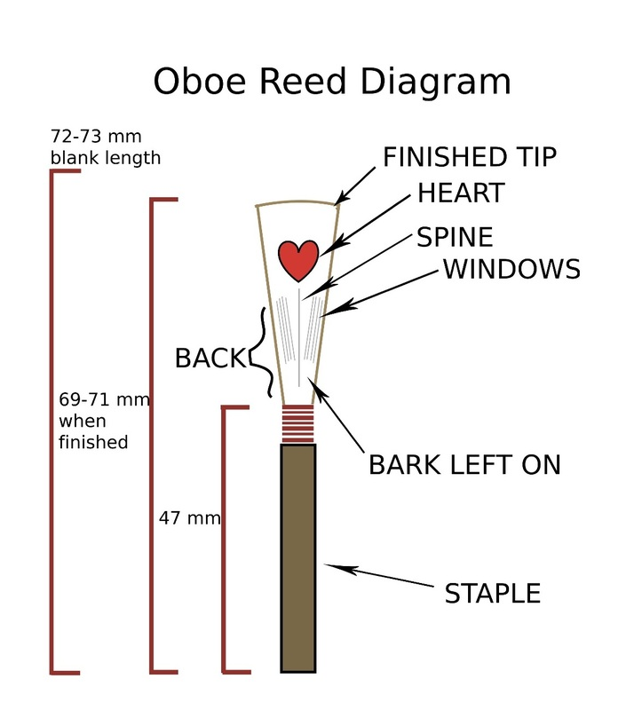 Oboe parts diagram electrical drawing wiring diagram reed making uab double reed society rh uabdoublereed weebly com oboe key diagram english horn fingerings ccuart Choice Image